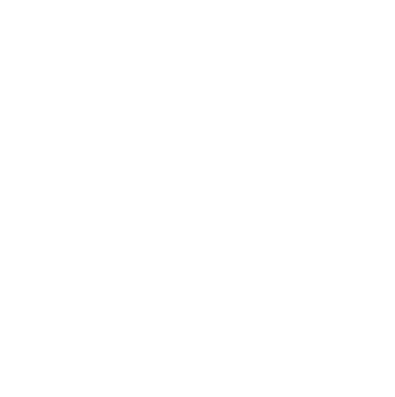 Globe and Person icon